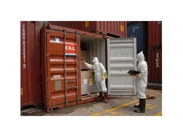 进口高风险非冷链集装箱货物实施预防性消毒疑点解析