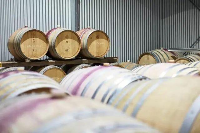 澳洲酒对华出口暴跌98%