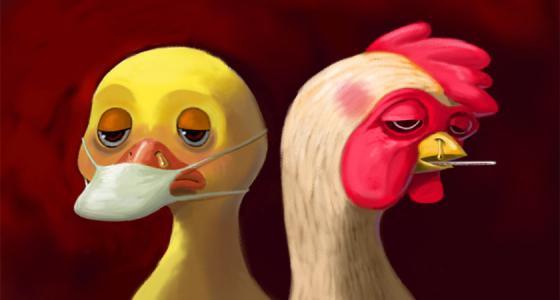 高致病性禽流感