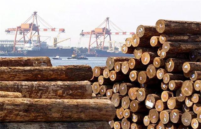 澳大利亚木材进口