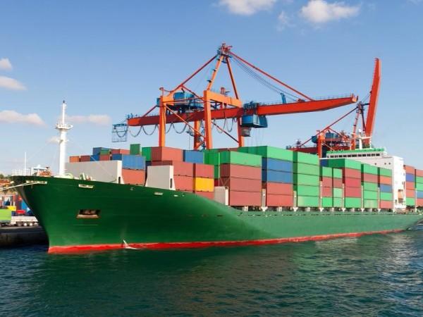 中国经贸动态及其预警0120