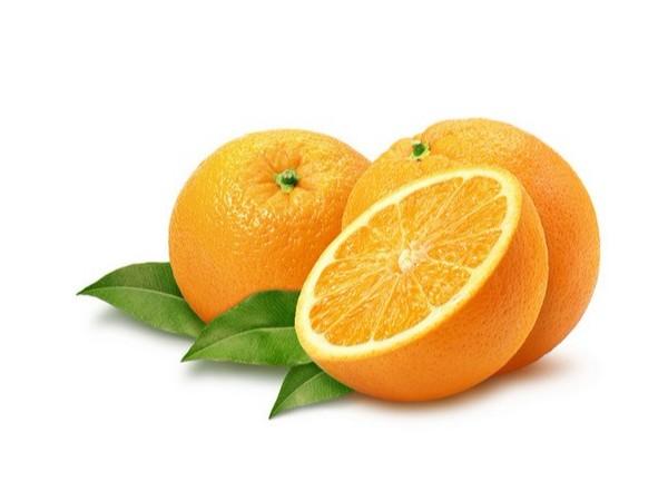 柑橘出口申报流程及注意事项